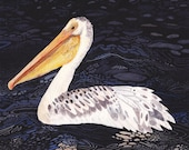 Pelican at Night- Archival Print