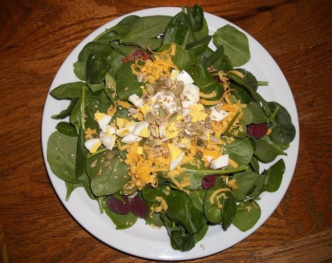 Good Seasons Salad Dressing Mix Italian Salad Dressing Seasoning Mix Italian Herbs Italian Spices Italian Salad Dressing Salt Free