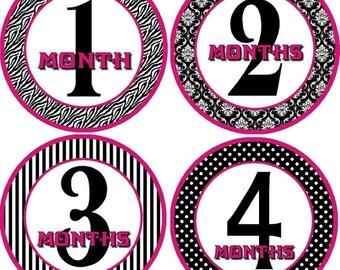 Monthly bodysuit Baby Stickers - Divine (Girl Damask, Stripes, Polka Dots, Zebra)