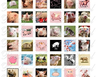 Pigs - 3 sizes - Inchies, 7-8 inch, and scrabble tile size .75 x .83 inch - Digital Collage Sheet - INSTANT DOWNLOAD