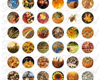 Autumn Harvest - One Inch Circles - INSTANT DOWNLOAD - Digital Collage Sheet