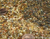 Small stones-Miniature slightly Polished Pebbles for terrariums-Vivariums-Weddings-Craft Projects and More 2x3 bag