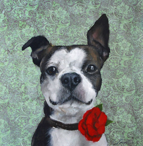 Cute, Cheerful, Black and White Boston Terrier with Red Poppy, Rose, on Aqua Green Background  - original oil painting