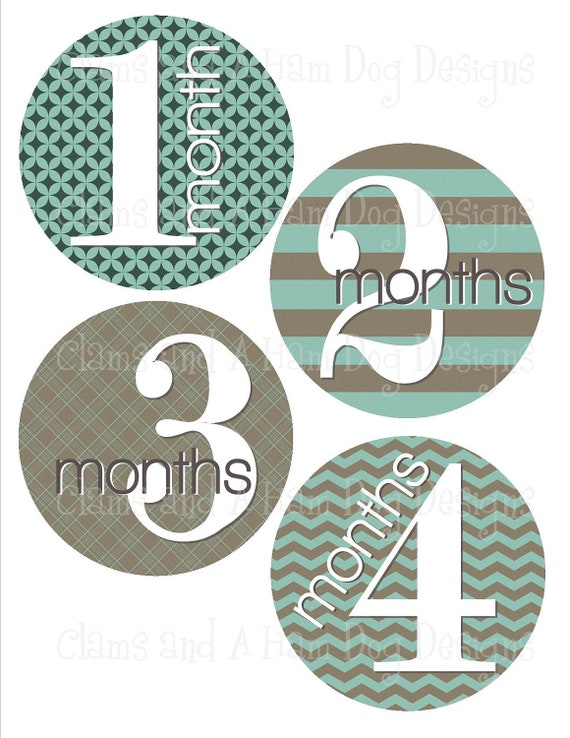 Monthly Baby Stickers- Boys monthly milestone stickers- Baby month stickers- Monthly baby stickers- Baby shower decoration- BOY174