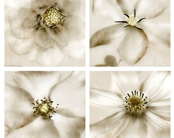 Whisper Floral Print Set - Save 20% - Soft and surreal dahlia, gardenia, rose and cosmos flowers for timeless home decor.