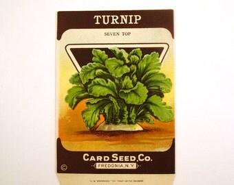 Vintage 1920s Unused Paper Seed Packet Turnip