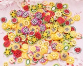 Polymer Clay Cane Fruit Assorted Fimo Clay Slices Set - 10grams