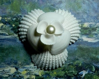 Seaflower Seashell Corsage or Boutonniere