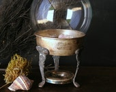 Vintage Glass Globe Nature Display With Silver Plated Stand