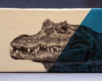 Hand Painted Chinese Alligator Portrait Wall Tile Turquoise