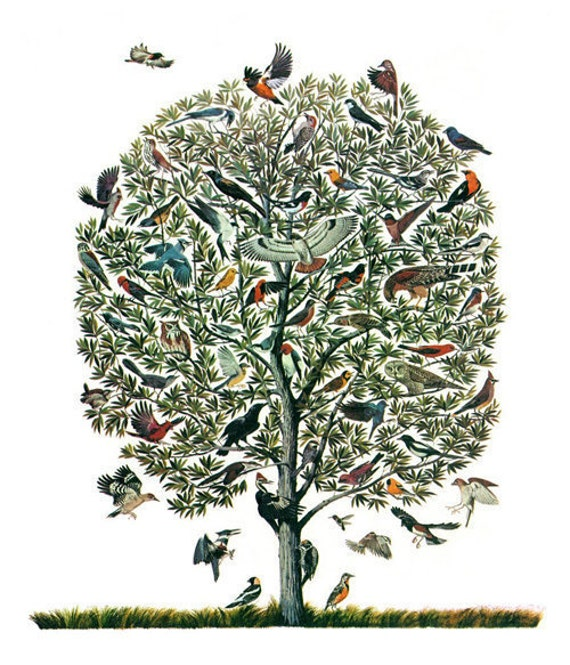 Vintage feather print tree of birds natural like this item altavistaventures Image collections