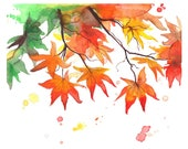 Autumn's Colors an Original watercolor study of Fall leaves by Jessica Durrant