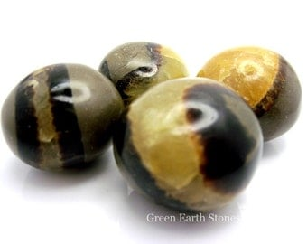 Beautiful! One Septarian Dragonstone Tumbled Stone, Feng Shui, Crystal Healing, Stones, Rock Hound