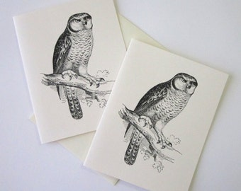 Owl Note Cards Stationery Set of 10 Cards