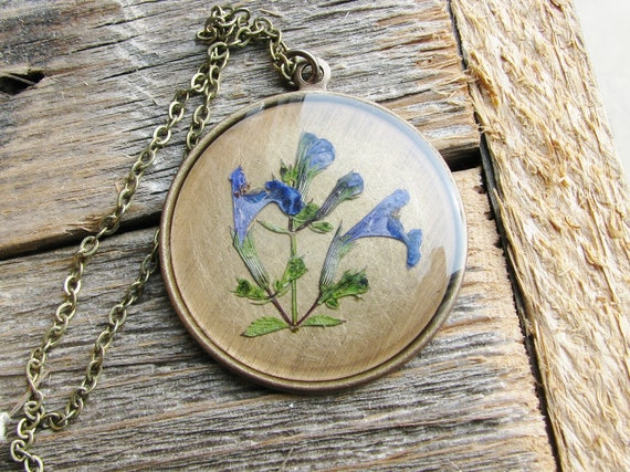 Blue Purple Botanical Necklace Speedwell Plant Botanical Jewelry Pressed Flowers Resin Antique Brass Chain