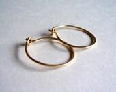 Small gold hoop earrings, gold earrings, gold hoops