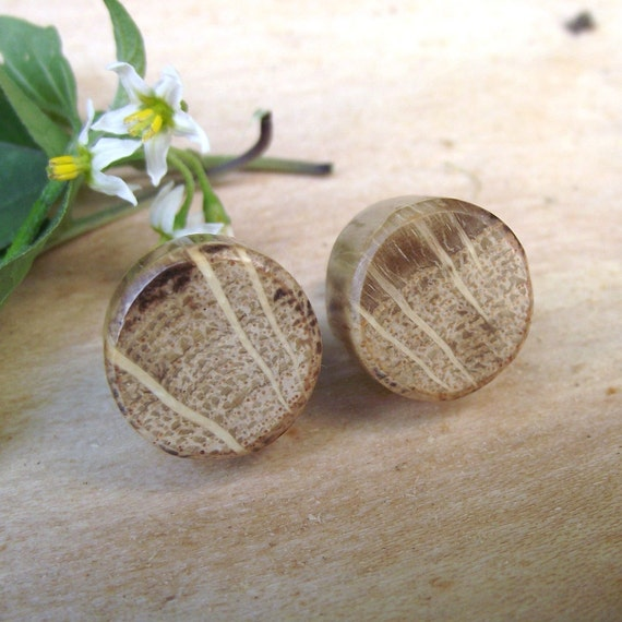 RESERVED - Rustic Oak Wood Post or Stud Earrings - Round Wooden Post Earrings Handmade from Oak Wood Tree Branch - Natural Wood Jewelry gift