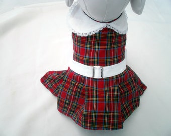 Back to School -  Dogs or Cats Dress