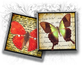 Butterflies 1 Inch Squares Digital Collage Sheet Download and Print