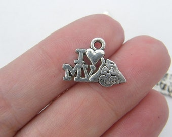 12 I love my dog charms antique silver tone D17