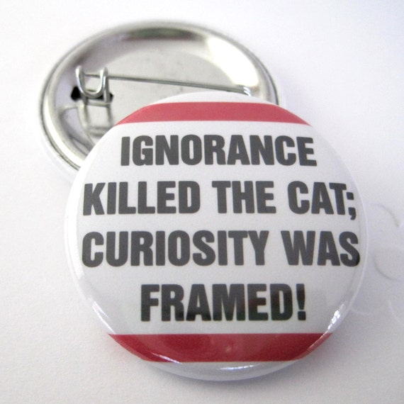Ignorance Killed th Cat, Curiosity was Framed 1 1/2 inches (38mm) Photo Pinback Button or Magnet