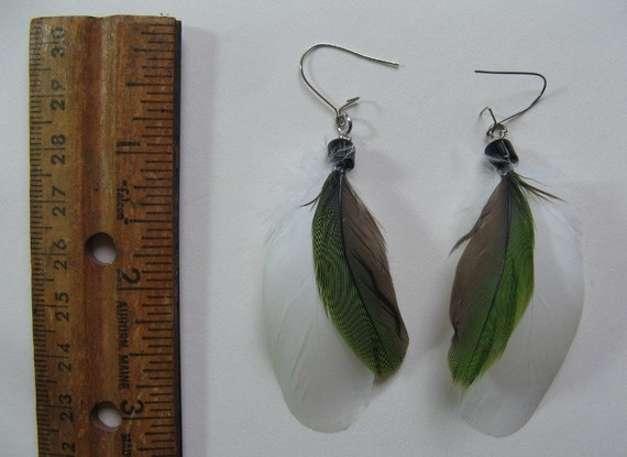 FEATHER EARRINGS Beautiful Exotic Bird Feathers by ...