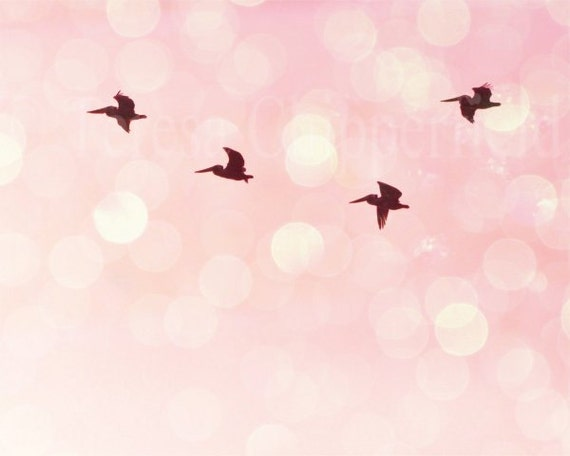 Bird Wall Decor, Pelicans Flying, Pink Nursery Wall Art,  Art Photography, 8 x 10, 11 x 14, Tranquil, Gentle, Soft, Pastel, Surreal, Bokeh