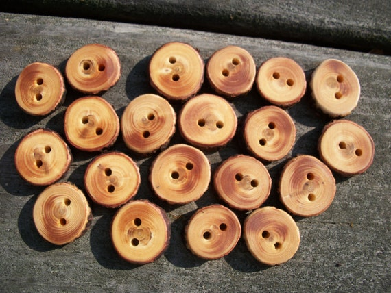 20 Blue Spruce Buttons. Just Under 1 Inch Wide