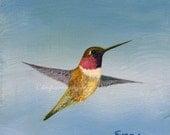 Hummingbird print SPRING 5 x 5 Giclee bird print from my original painting