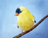Goldfinch painting 8 x 10 finch painting