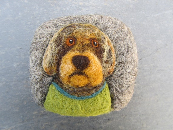 Dog wearing a green jumper