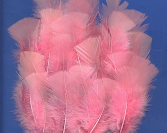 20 Feathers , Hot Pink Turkey, Small