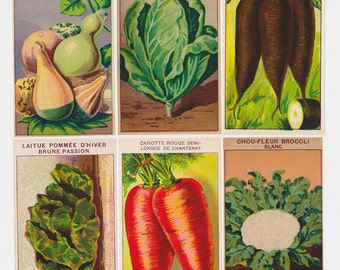 Country kitchen wall art 72 Vintage French Vegetable Seed Packet Labels original 1920s botanical art prints ideal for framing