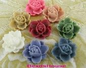 620-00--CA 16pcs Beautiful Rose Cabochons - Mix-Colour