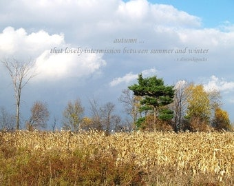Autumn landscape, inspirational print, Autumn Approaches, harvest, summer to winter, home decor, wall art