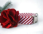 Peppermint Stick Christmas Dog Collar with Nickel Plate Hardware and Red Flower Accessory