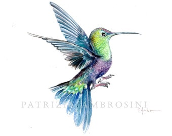 Original 8X10 Watercolour Hummingbird No.7 . NOT A PRINT ..Original Painting