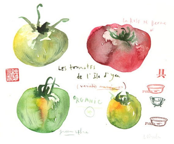 Vintage tomato varieties, Original watercolor painting, kitchen decor, food illustration, red, green, organic, eat local