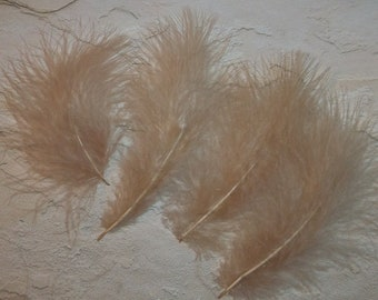 Champagne marabou feathers, craft supplies, DIY, bridal wedding hair clips, feathers