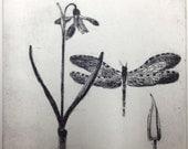 Snowdrop & Dragonfly - an original etching 4.50 x 4.50 in
