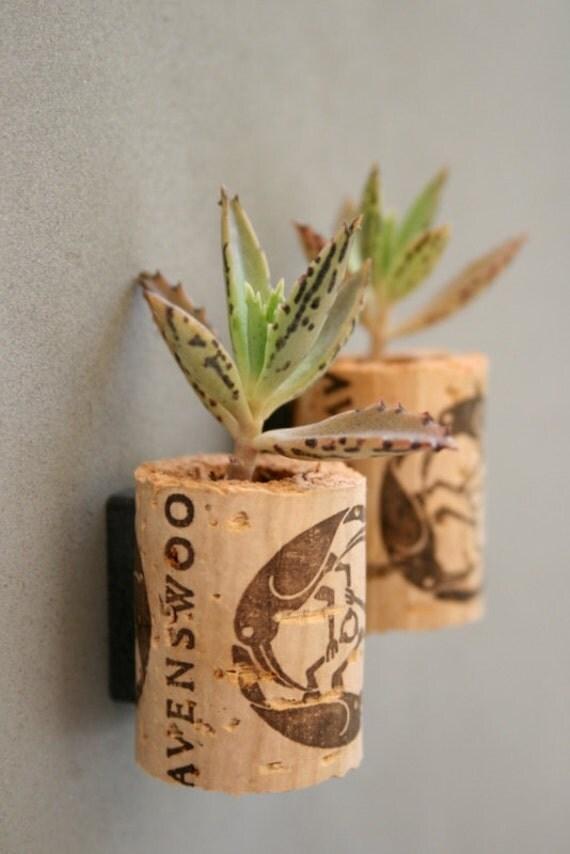 Mini Succulent Cork Magnets, Set of 2