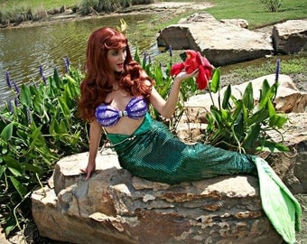 Ariel Resin Shells Painted Set (Resin Shell Bra Only)