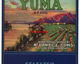 1940s Old Fort Yuma Somerton AZ Vegetable Fields Veggie Crate Label