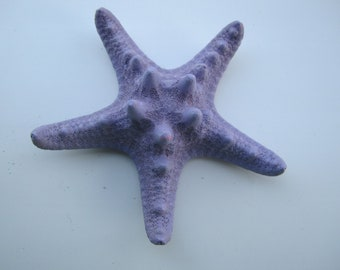 light purple knobby starfish bobby pin HAIR clip