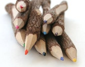 10 Twig wooden colored pencils - 13cm width