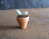 Felted seedling in a terracotta pot, miniature potted plant, mini houseplant, felt succulent, dollhouse miniature plant, gifts for gardeners