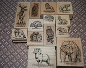 Rubber Stamp Set, Wildlife, Nature, Stampin Up, Scrapbooking Stamps