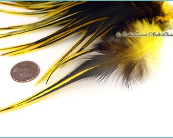 Yellow Craft Feather Wholesale Laced Rooster Saddle Sunshine Yellow Feathers for Crafts Yellow Rooster Feathers Black and Yellow, 12 PCS