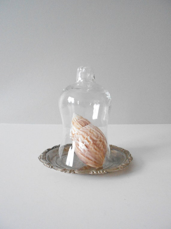 bell shaped glass cloche with silver plated tray