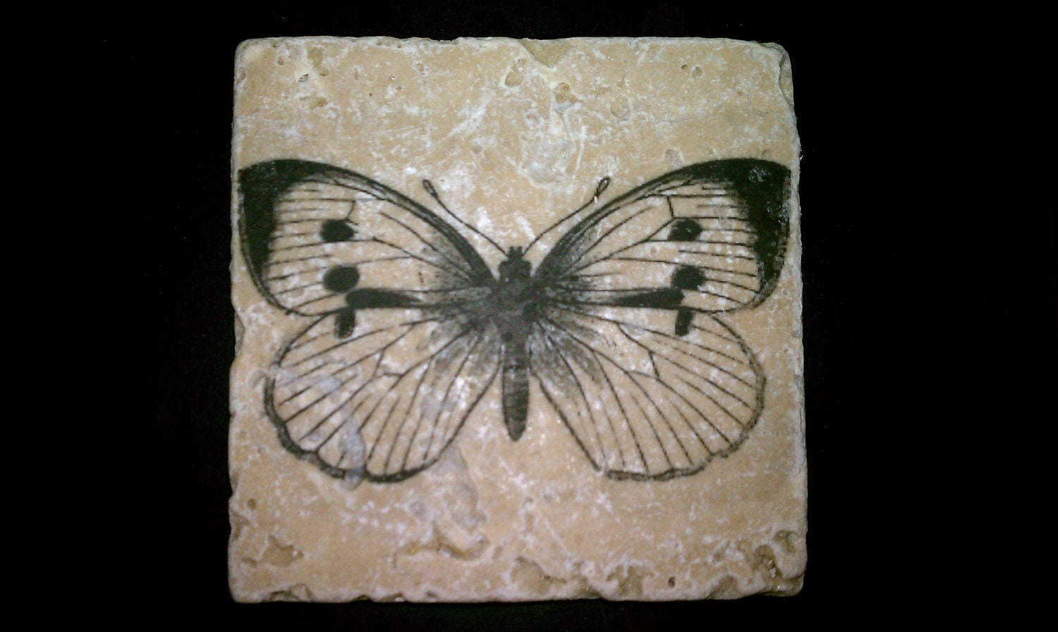 Drink Coasters Butterfly Coasters Natural Stone Coasters